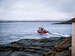 Jäämeri. Kuvat Pirkko ja Mikael Soininen.